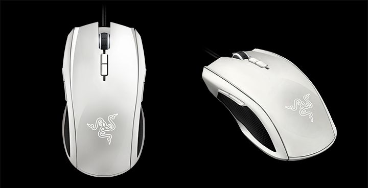 Illustration de l'article sur Razer lance la souris Taipan White