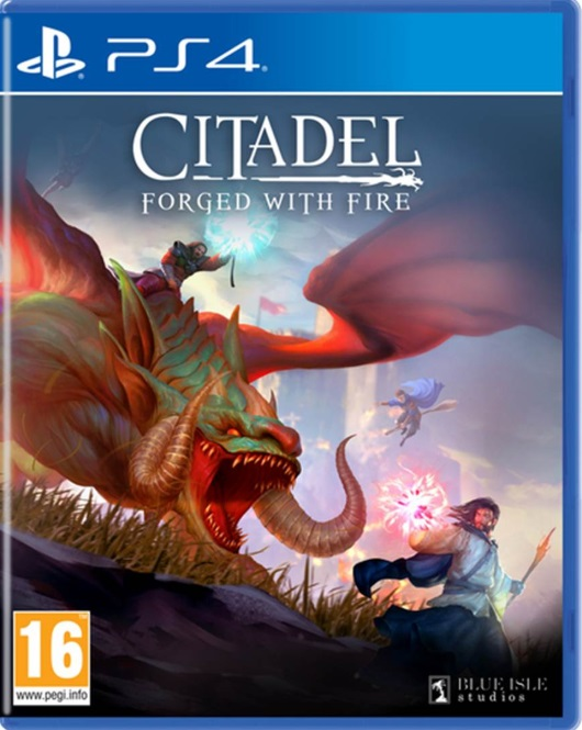 Retrouvez notre TEST : Citadel: Forged With Fire