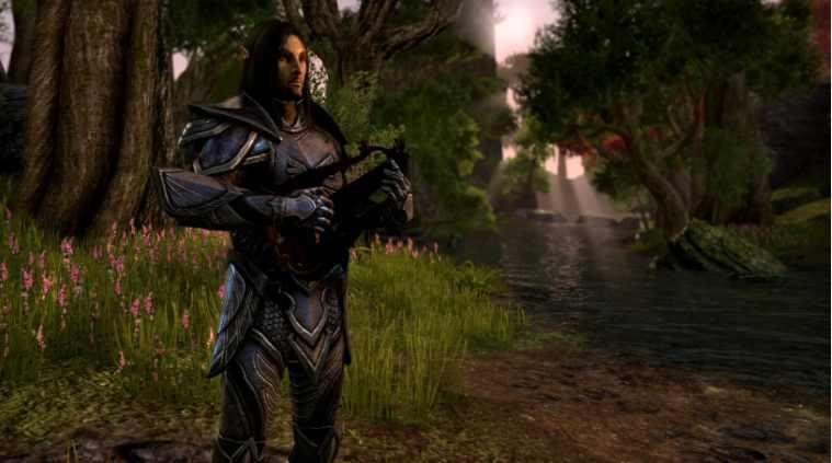 Illustration de l'article sur The Elder Scrolls Online informations sur Raidelorn